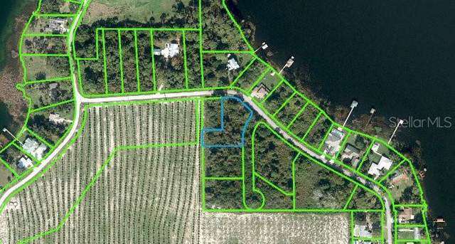 133 S Huntley Drive, Lake Placid, FL 33852 (MLS #O5907217) :: Griffin Group