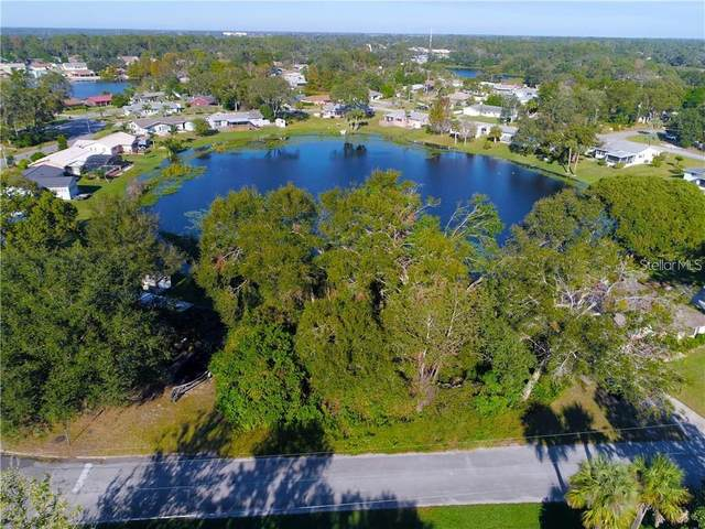 2 Camelia Drive, Debary, FL 32713 (MLS #O5907419) :: Griffin Group