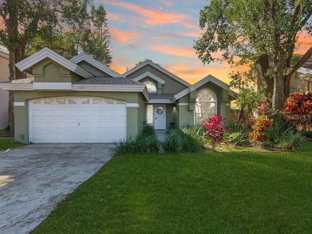 5284 Bonairre Boulevard, Orlando, FL 32812 (MLS #O5907579) :: Cartwright Realty