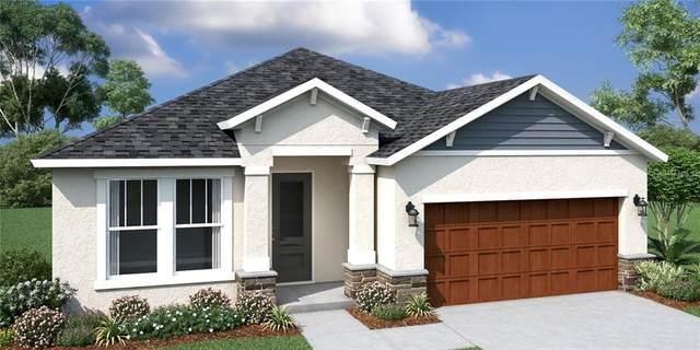 34219 Radley Way, Wesley Chapel, FL 33545 (MLS #O5907683) :: Griffin Group