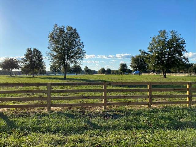 Babb Road, Umatilla, FL 32784 (MLS #O5907914) :: Griffin Group