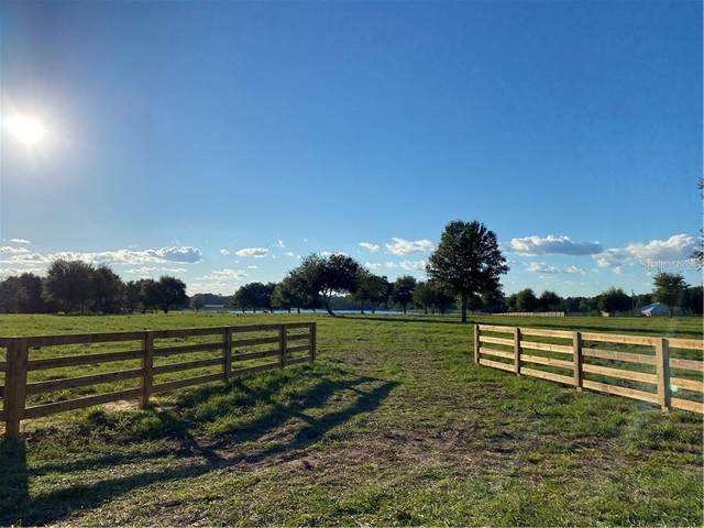Babb Road, Umatilla, FL 32784 (MLS #O5907921) :: Tuscawilla Realty, Inc