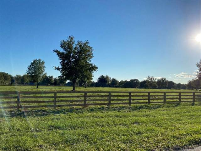 Babb Road, Umatilla, FL 32784 (MLS #O5907929) :: Griffin Group