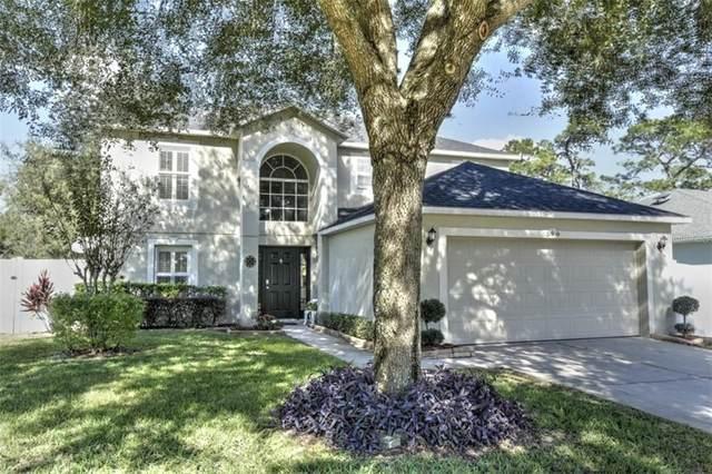 569 Dominish Estates Drive, Apopka, FL 32712 (MLS #O5908120) :: Bob Paulson with Vylla Home