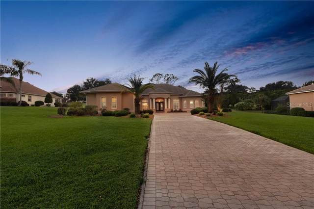 39621 Harbor Hills Boulevard, Lady Lake, FL 32159 (MLS #O5908182) :: Delta Realty, Int'l.