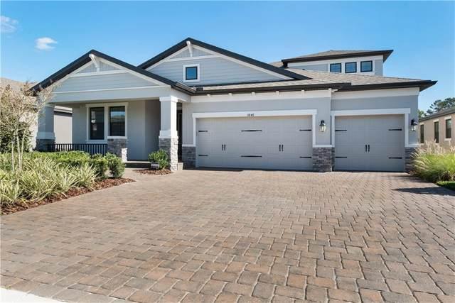 3846 Mellon Drive, Odessa, FL 33556 (MLS #O5908422) :: Pepine Realty
