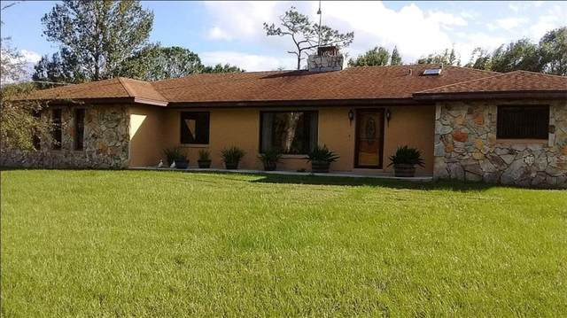 2385 Gunn Road, Kissimmee, FL 34746 (MLS #O5908484) :: Bridge Realty Group