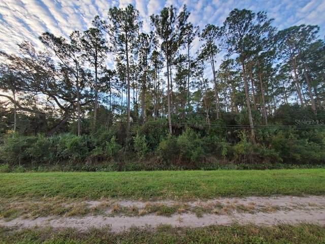 24910 E Colonial Drive, Christmas, FL 32709 (MLS #O5908793) :: Griffin Group