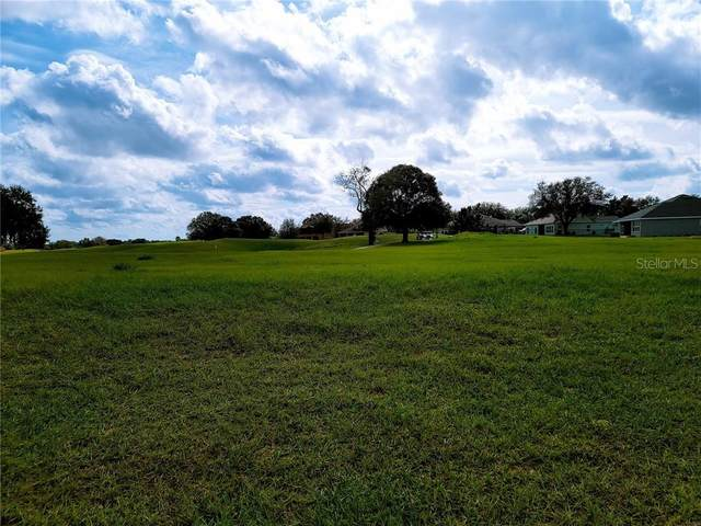24336 Calusa Boulevard, Eustis, FL 32736 (MLS #O5908867) :: Griffin Group