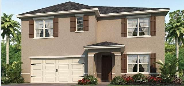 3118 Logan Berry Drive, Mount Dora, FL 32757 (MLS #O5909009) :: Griffin Group