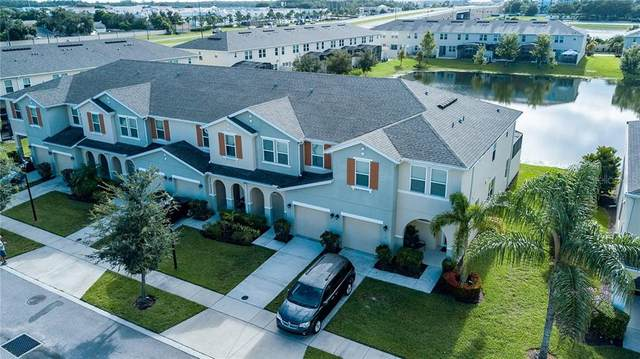 3117 Tocoa Circle, Kissimmee, FL 34746 (MLS #O5909658) :: Homepride Realty Services