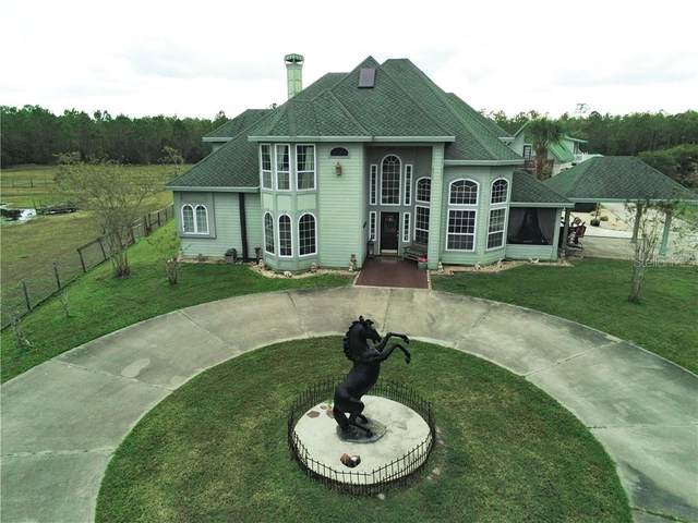 3550 Rodeo Acres Drive, Ormond Beach, FL 32174 (MLS #O5909808) :: Florida Life Real Estate Group