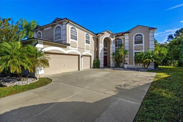 2072 Stone Cross Circle, Orlando, FL 32828 (MLS #O5909991) :: Rabell Realty Group