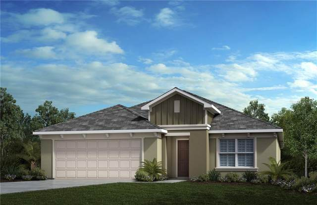 2427 Biscotto Circle, Davenport, FL 33897 (MLS #O5910018) :: The Duncan Duo Team