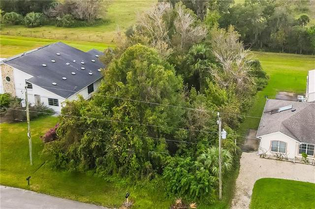 1408 Willow Oak Drive, Edgewater, FL 32132 (MLS #O5911174) :: Delta Realty, Int'l.