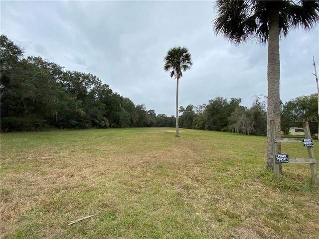 S Glencoe, New Smyrna, FL 32168 (MLS #O5911400) :: Young Real Estate