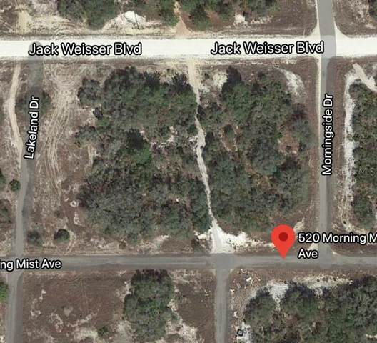 520 Morning Mist Avenue, Lake Placid, FL 33852 (MLS #O5911583) :: Bob Paulson with Vylla Home