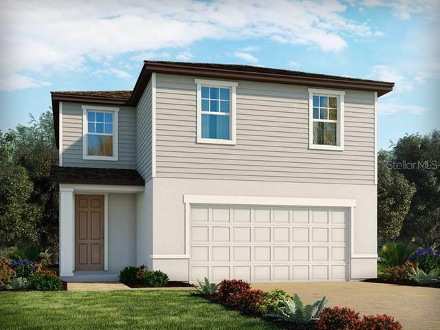 29807 Anahid Drive, Leesburg, FL 34748 (MLS #O5912186) :: Griffin Group