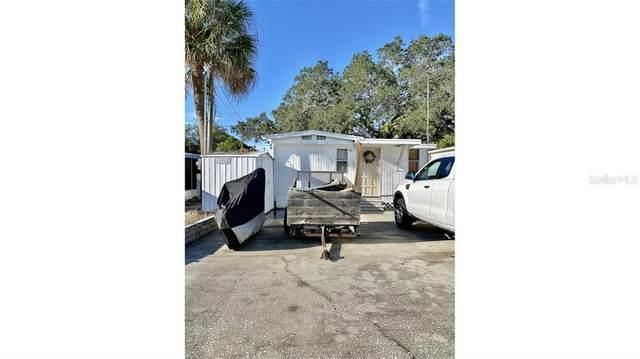 Tarpon Springs, FL 34689 :: Young Real Estate