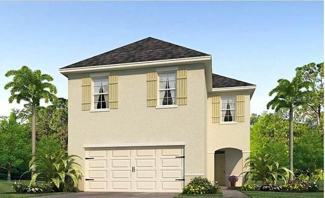 741 Andean Lane, Davenport, FL 33837 (MLS #O5913535) :: Everlane Realty