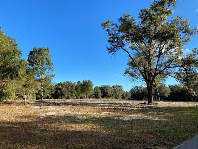 Maggie Jones Road, Paisley, FL 32767 (MLS #O5913582) :: Griffin Group