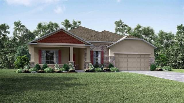 11854 June Briar Loop, San Antonio, FL 33576 (MLS #O5913968) :: Everlane Realty