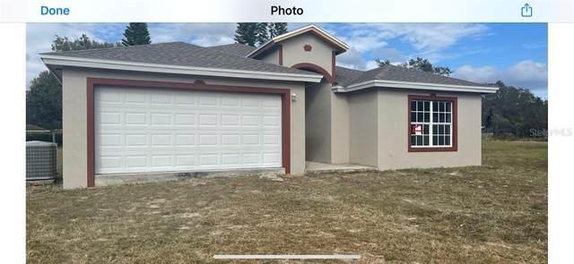 713 E Cornell Street, Avon Park, FL 33825 (MLS #O5914418) :: Pepine Realty