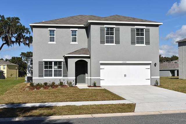2891 Harmonia Hammock Road, Saint Cloud, FL 34773 (MLS #O5915032) :: Team Buky