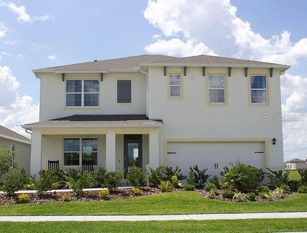 2895 Harmonia Hammock Road, Saint Cloud, FL 34773 (MLS #O5915047) :: Team Buky