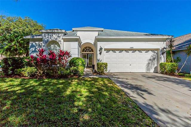 11829 Easthampton Drive, Tampa, FL 33626 (MLS #O5915382) :: The Duncan Duo Team