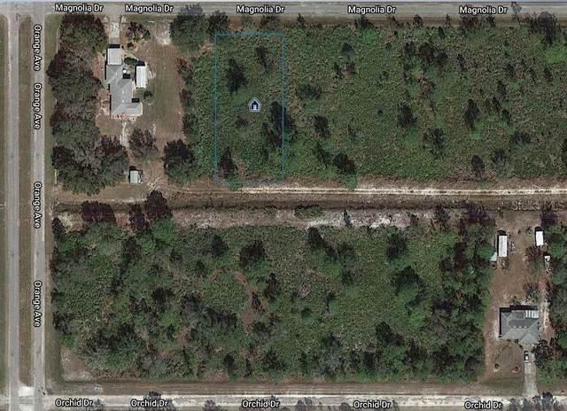 719 Magnolia Drive, Indian Lake Estates, FL 33855 (MLS #O5915482) :: EXIT King Realty
