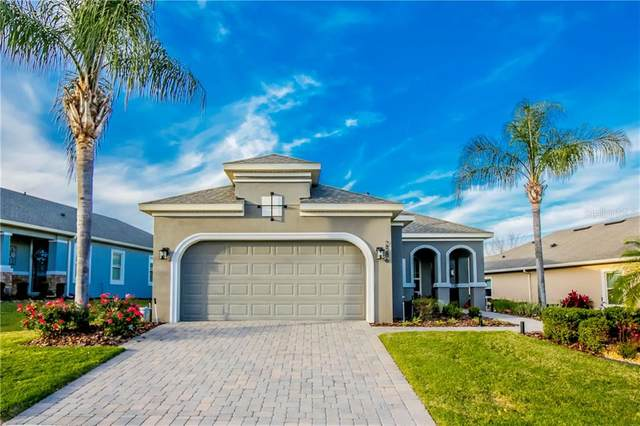 2586 Stargrass Circle, Clermont, FL 34715 (MLS #O5915521) :: Griffin Group