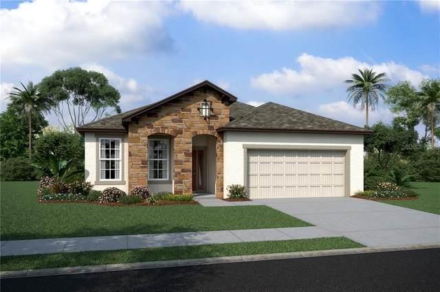 6236 Sea Air Drive #3223, Apollo Beach, FL 33572 (MLS #O5915577) :: Everlane Realty