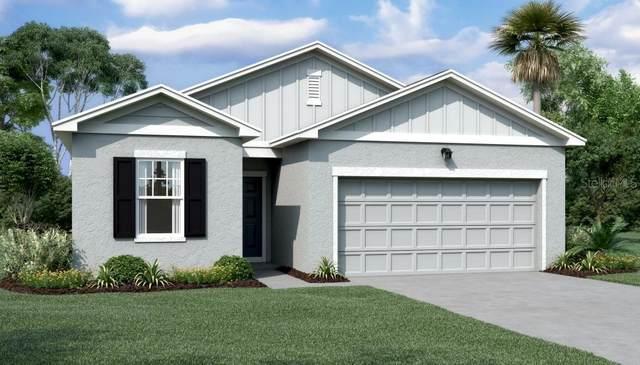 3040 Neverland Drive, New Smyrna Beach, FL 32168 (MLS #O5915881) :: BuySellLiveFlorida.com