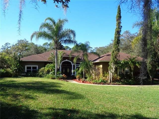 12124 Rambling Oak Boulevard, Orlando, FL 32832 (MLS #O5915953) :: Premier Home Experts