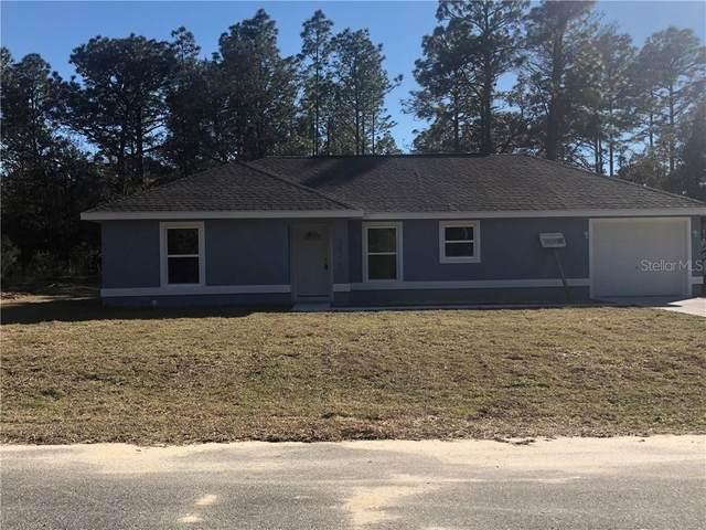 27 Pecan Run Pass, Ocala, FL 34472 (MLS #O5916064) :: Young Real Estate