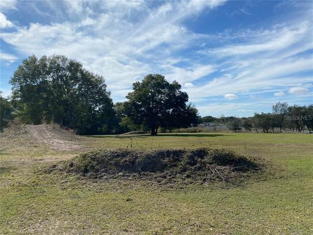 9358 Morton Jones Road, Gotha, FL 34734 (MLS #O5916086) :: Bustamante Real Estate