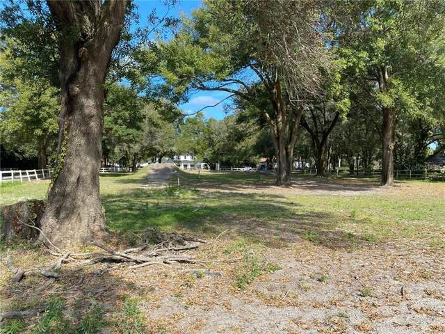 9304 Morton Jones Road, Gotha, FL 34734 (MLS #O5916089) :: Bustamante Real Estate