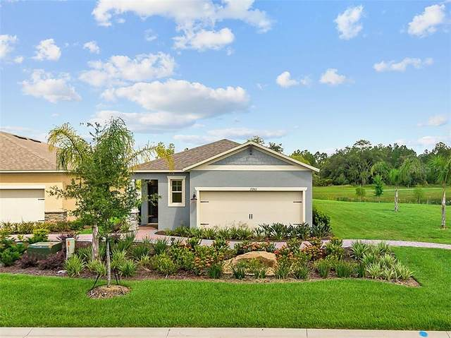17422 Blazing Star Circle, Clermont, FL 34711 (MLS #O5916301) :: Dalton Wade Real Estate Group