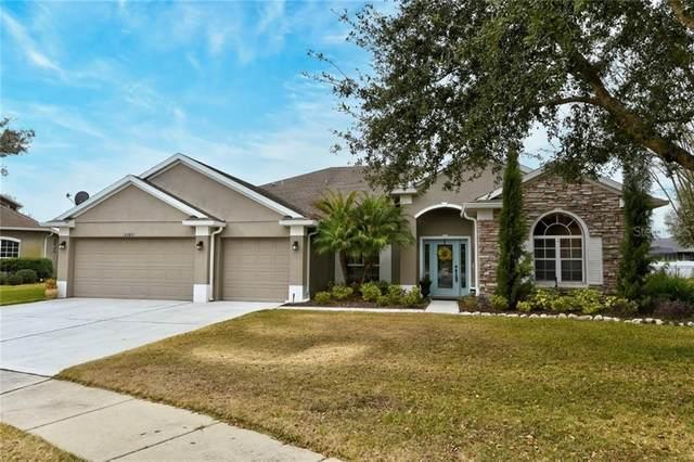33811 Venice Lane, Sorrento, FL 32776 (MLS #O5916417) :: Visionary Properties Inc