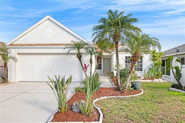 12529 Dawn Vista Drive, Riverview, FL 33578 (MLS #O5916616) :: Dalton Wade Real Estate Group