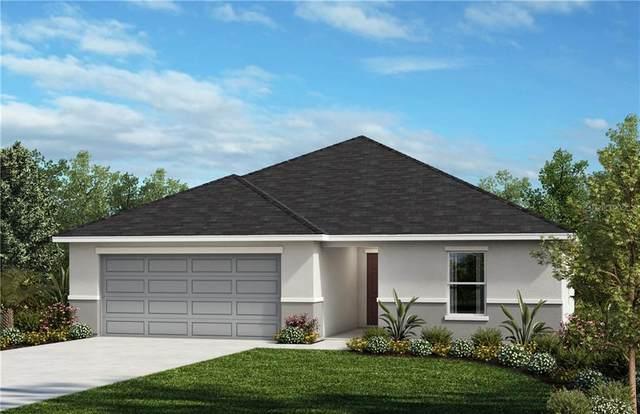 294 Sunfish Drive, Winter Haven, FL 33881 (MLS #O5917034) :: CGY Realty