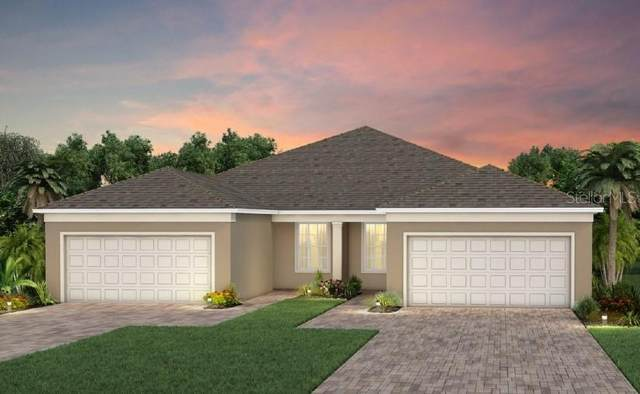 3041 Cherry Blossom Loop, Saint Cloud, FL 34771 (MLS #O5917216) :: Rabell Realty Group