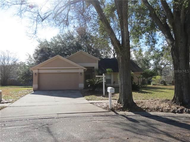 2446 Cricket Wood Court, Apopka, FL 32703 (MLS #O5917240) :: Burwell Real Estate