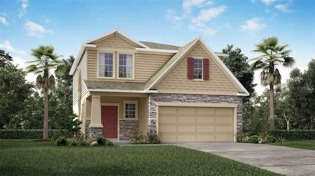 6707 S Faul Street, Tampa, FL 33616 (MLS #O5917260) :: Dalton Wade Real Estate Group