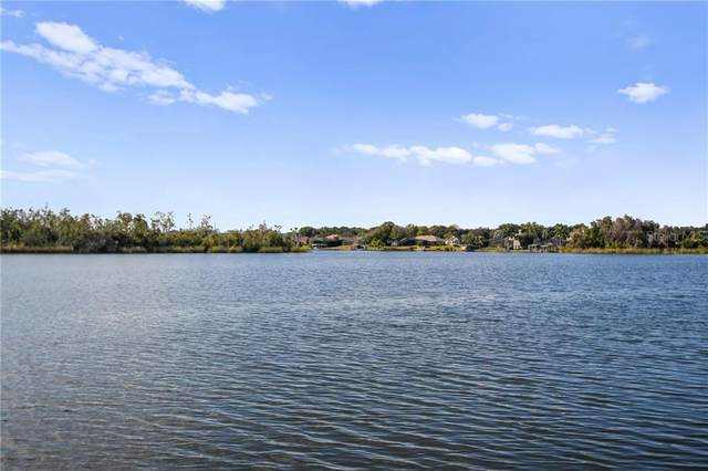 13036 Lake Roper Court, Windermere, FL 34786 (MLS #O5917267) :: The Price Group