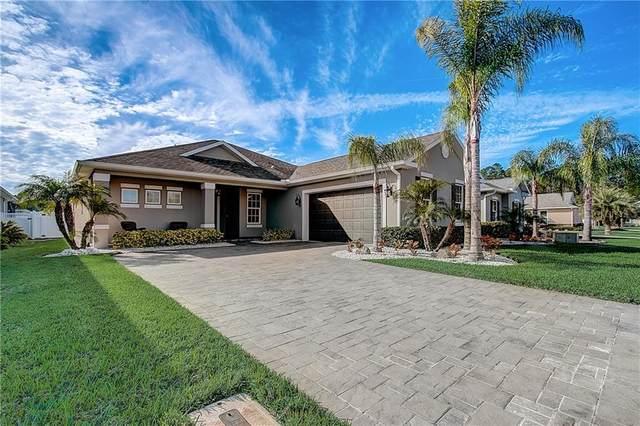 3654 Cesi Avenue, New Smyrna Beach, FL 32168 (MLS #O5917273) :: Your Florida House Team