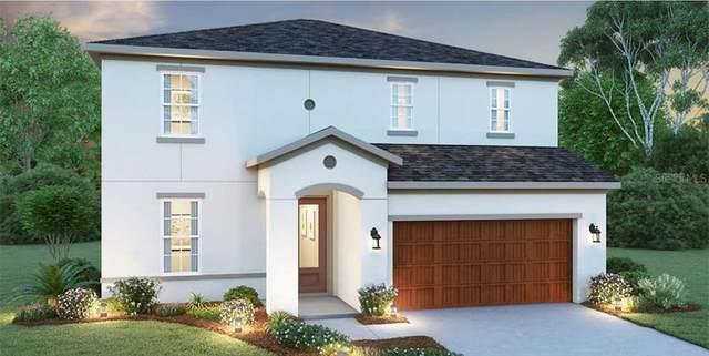 34243 Radley Way, Wesley Chapel, FL 33545 (MLS #O5917488) :: Everlane Realty