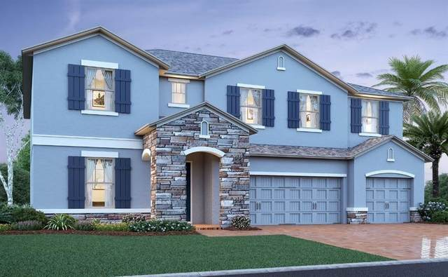2361 Santa Vista Loop, Apopka, FL 32703 (MLS #O5917912) :: Armel Real Estate