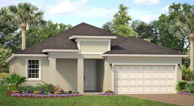 2924 Deerberry Lane, Clermont, FL 34714 (MLS #O5918001) :: Premium Properties Real Estate Services